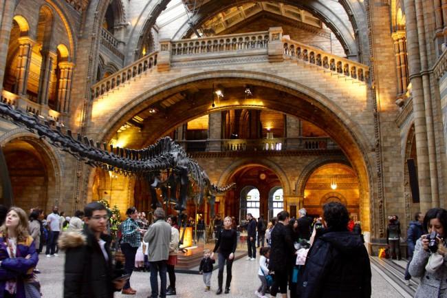 Holl del Natural History Museum con el diplodocus de fondo