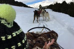 Vista de los perros tirando del trineo desde la perspectiva de Eric. Andorra.