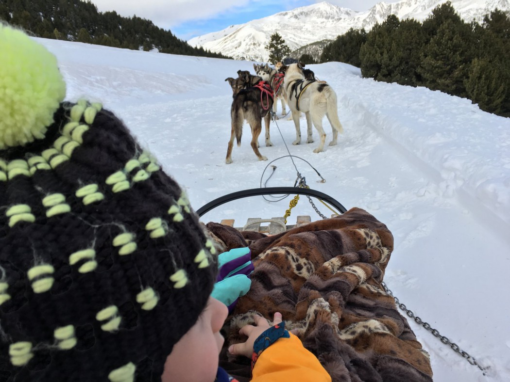 Foto de los perros desde la perspectiva de Eric. Trineo tirado por perros, mushing en Grandvalira, Andorra.
