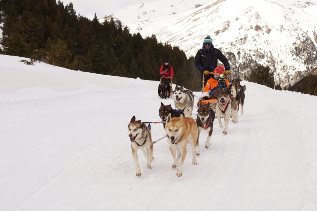 Trineo tirado por perros, mushing en Grandvalira, Andorra.